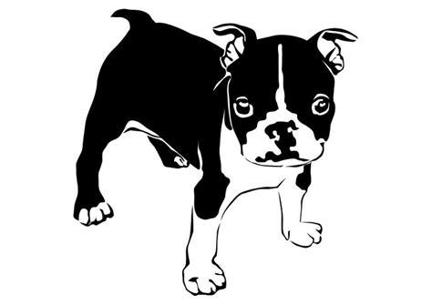hundemantel französische bulldogge malvorlage dogge franz 195 182 sische bulldogge ausmalbild 27821 images