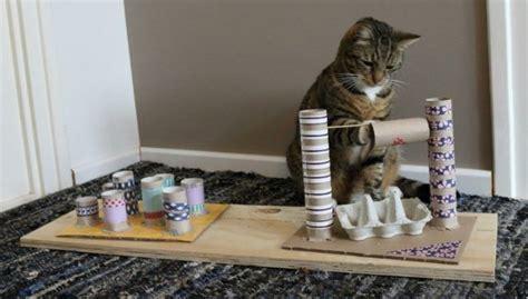 katzenspielzeug basteln ideen toilettenpapierrollen eierkartons fummelbrett katze