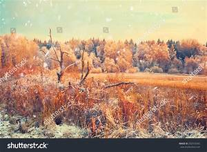Winter Landscape Sunset Snow Falls Stock Photo 252553345 ...