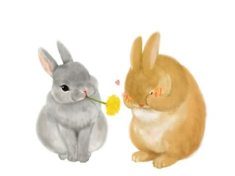 bunny illustration things i love pinterest pictures student and bunnies