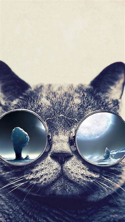 Cat Cool Iphone Wallpapers Glasses Grumpy Galaxy