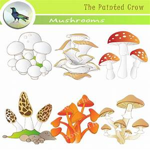 Decomposers - DeComposers An Excellent Project On Kitchen ...