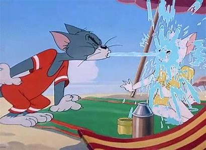 Tom Toodles Cat Galore Water Salt Tabby