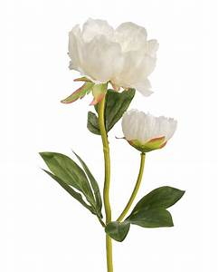 Peony Silk Flower Stems for Casual Decorating at