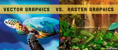 difference  vector graphics  raster graphics