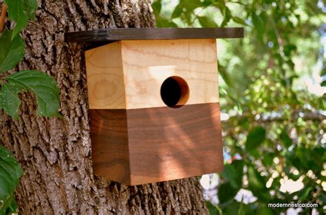 modern bird house chickadee