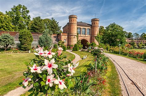 Botanischer Garten Karlsruhe  Fotos  Botanischer Garten