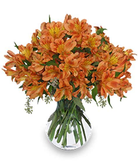 persimmon grove fall flowers in adrian mi barrett s
