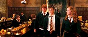 ron weasley harry potter Hermione Granger meme les ...