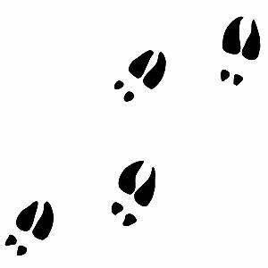 JustDecal Deer Tracks Decal : ShoppersChoice com