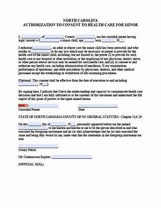north carolina minor child power of attorney form power