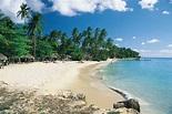 Trinidad and Tobago - Resources | Britannica