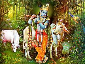 God Krishna with Flute & Cow Wallpaper Download