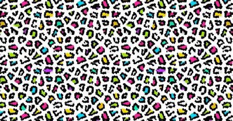 Colorful Animal Print Wallpaper - colorful cheetah wallpapers wallpapersafari