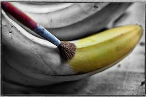50 Wonderful Black & White Photos with Partial Color Effects