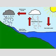 Water, Water Everywhere! Research The Water Cycle