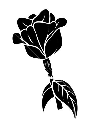 rose silhouette royalty  stock image storyblocks images