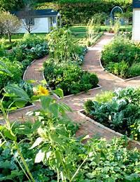 excellent edible garden design Potager Garden - Traditional - Landscape - chicago - by ...