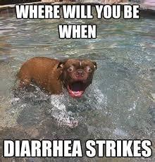 Diarrhea Memes - being chronically beautiful where will you be when diarrhea strikes