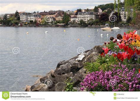 Geneva Flowers 17 flowers and lake geneva montreux switzerland stock