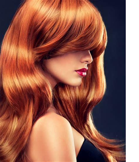 great hair color great hair color secrets hair salon mokena il amato