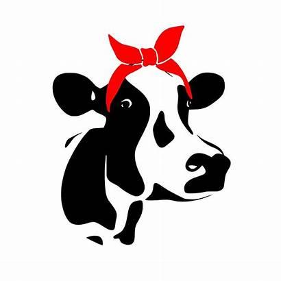 Cow Bandana Svg Heifer Cricut Vinyl Cutting