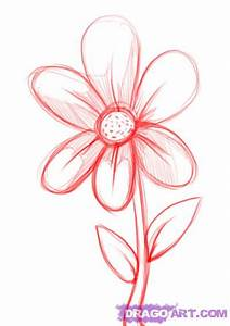 How to Draw a Simple Flower, Step by Step, Flowers, Pop ...