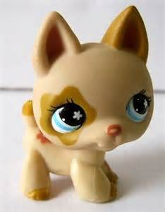 Light Brown LPs Dog with Blue Eyes
