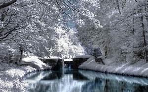Life Around Us: Winter Season