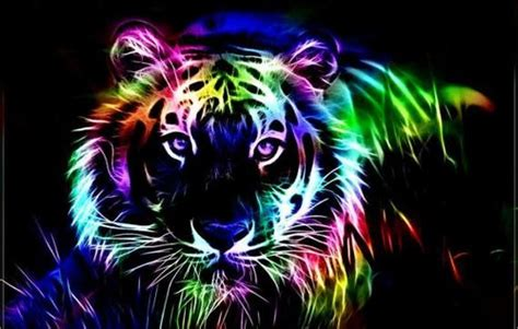 Bright Animal Wallpaper - bright colors images neon big cat wallpaper and background