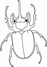 Coloring Beetle Animals Amazing Sheet Chan Bailey Tocolor Clan Button Template Sheets Place Results Using sketch template