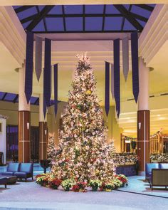 christmas trees in northern mi 1000 images about northern michigan on traverse city michigan and spas