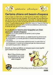Laisser Un Chien Seul Quand On Travaille : tous les lieux et activit s o votre chien est accept vacances avec votre chien visites ~ Medecine-chirurgie-esthetiques.com Avis de Voitures