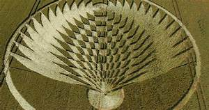 Scientist Says Crop Circles Are Real And Contain Hidden ...