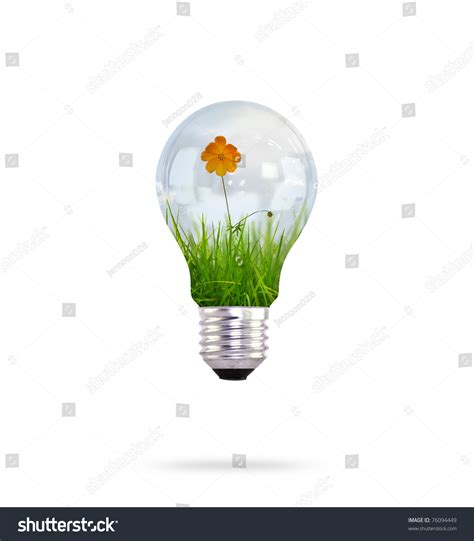 light bulb with beautiful flower inside stock photo