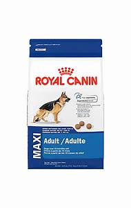 Royal Canin Maxi Adult : golden retriever adult dry dog food royal canin breed health nutrition ~ Eleganceandgraceweddings.com Haus und Dekorationen