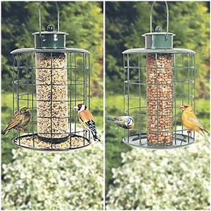 squirrel proof bird feeders twin pack daily express With outdoor string lights squirrel proof