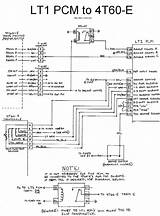 1995 Lt1 Wiring Harness Diagram
