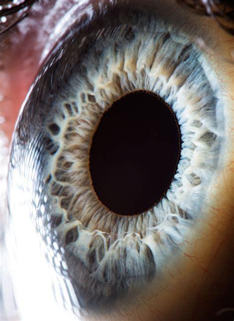 suren manvelyan  beautiful eyes dop