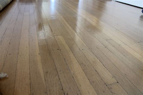 vinegar on wood floors diy wood floor polish the dabblist