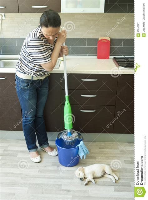 Angry Woman Squeezing Mop Near Puppy Royalty Free Stock