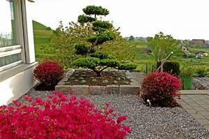 wuhrmann garten ag japangarten With feuerstelle garten mit bonsai eibe