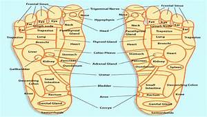 Acupressure Points Chart  U2013 For Relieving Pain