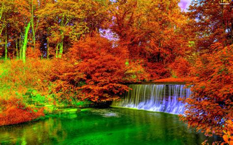 Autumn Fall Backgrounds Hd by 42 Autumn Backgrounds 183 Free Stunning Hd