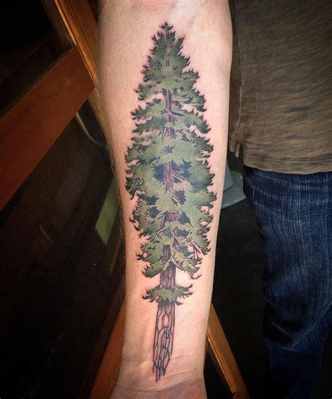 evergreen tattoo  tattoo ideas gallery