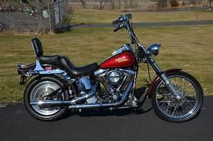 1987 Evolution Harley Davidson Softail Custom Fxstc Bike
