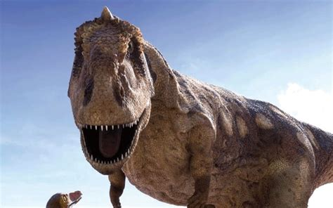 Dinosaurs Must Have Lived In Water, Scientist Claims