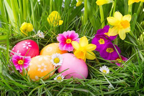 foire de printemps aux pepinieres des sources blog des