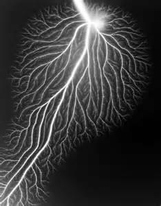 Hiroshi Sugimoto Lightning Fields