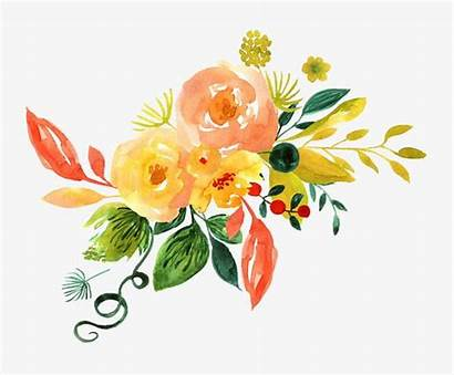 Watercolor Flower Floral Decoration Painted Pattern Flowers